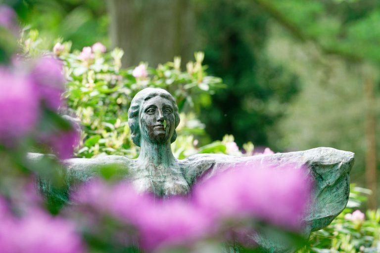 Engel_hinter_Rhododendron-DSC09196